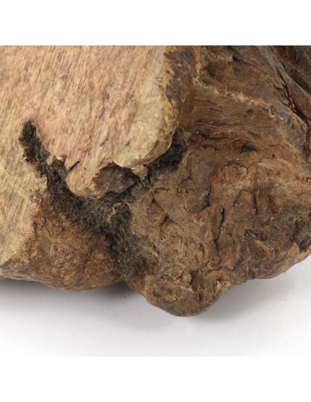 Gioco per cani naturale ed ecosostenibile realizzato con radice di erica