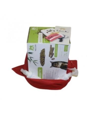 Pacchetto regalo gatto Eco-friendly